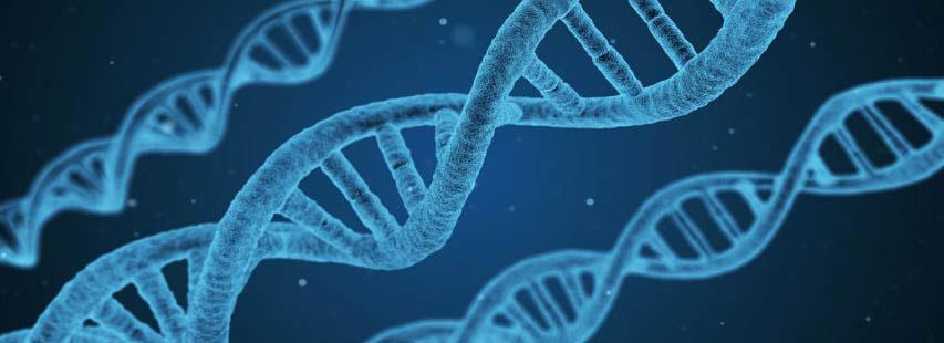 Representación de la cadena de ADN de color azul sobre un fondo azul oscuro.